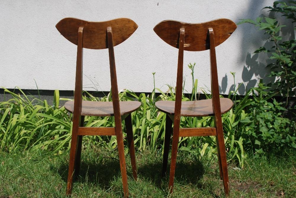 Krzesła projekt Wanda Genga